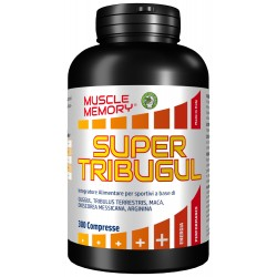 MUSCLE MEMORY SUPER TRIBUGUL 300 COMPRESSE